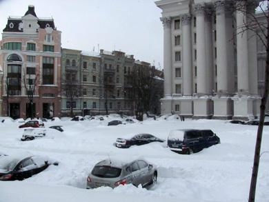 много заметенных снегом автомобилей