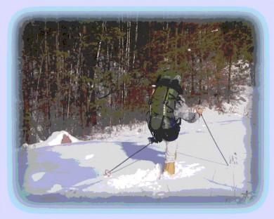 Лыжи - в народ