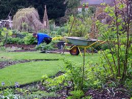 Садовник-хозяйственник
