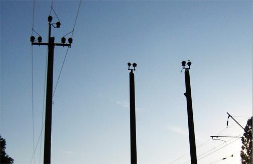 Негода відключила від струму 12 районів Полтавщині