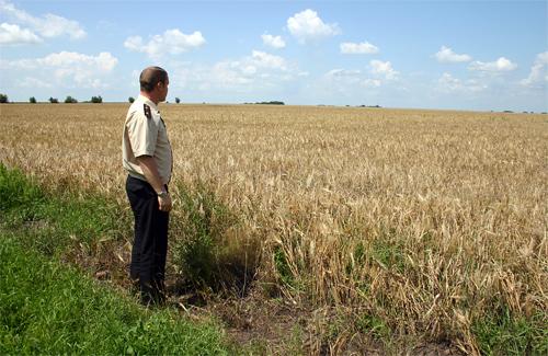 МНСники назвали сільгосппідприємства, які не шанують власний хліб