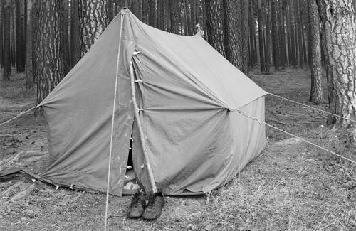 На Полтавщині закрили дитячий табір через антисанітарію