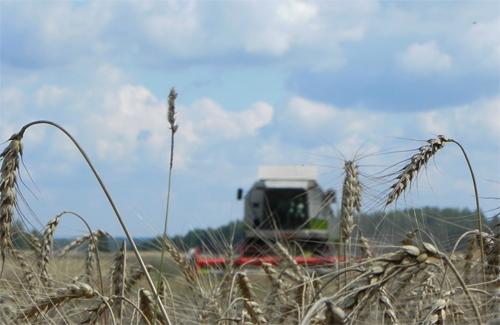 Жнива на Полтавщині: 243 порушення правил охорони праці
