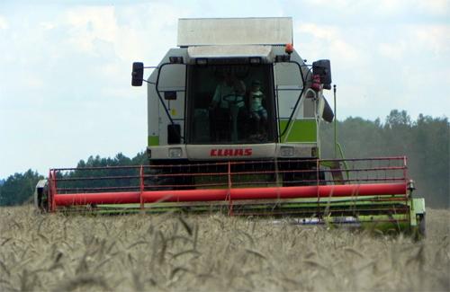 Полтавські аграрії не вклалися в заплановані терміни збирання врожаю
