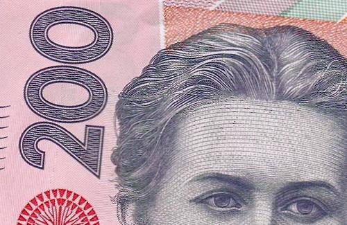 Коммунальные рынки Полтавы за полгода заработали 200 гривен
