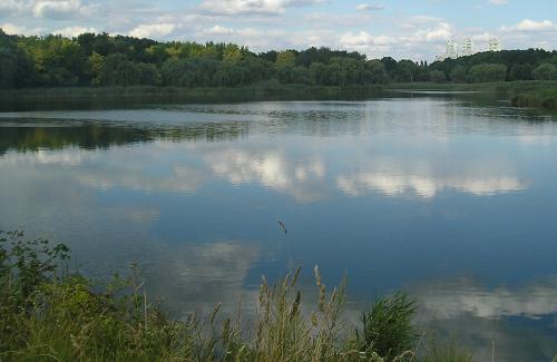 Пушкарівський ставок