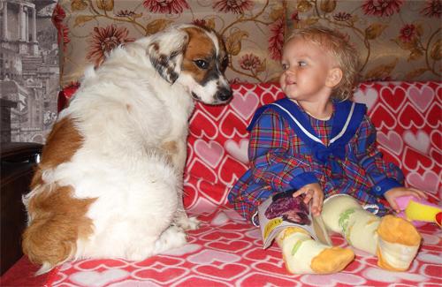 Как вы относитесь к тому, что в одной квартире с маленьким ребенком могут жить животные?