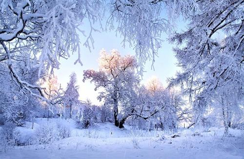 Погода в полтаве снегопад снегопад