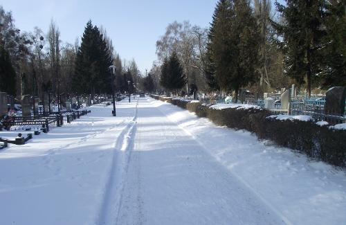Центральне міське кладовище
