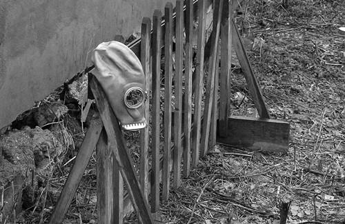 Від отрутохімікатів Полтавщину очистять до кінця 2012 року