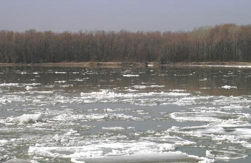 Підтоплені присадибні ділянки в Кременчуці