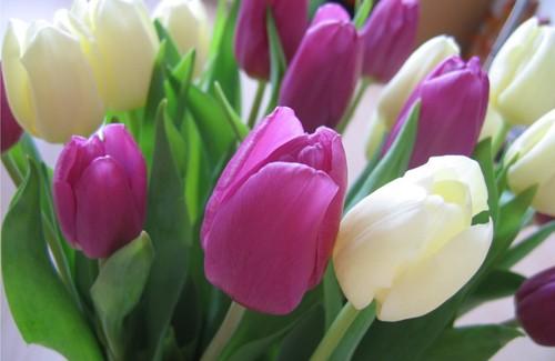 Цены на цветы повысились не только из