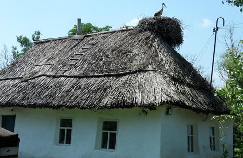 Через «Нижньосульський» парк на Полтавщині проклали туристичний ...