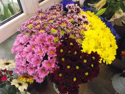 Які квіти подарувати на 1 вересня