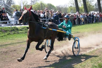 Кінно-спортивне свято в селі Дібрівка Миргородського району