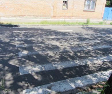 Зебра на улице Комсомольской