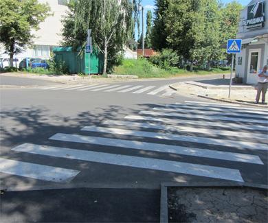 Зебра на улице Володарского