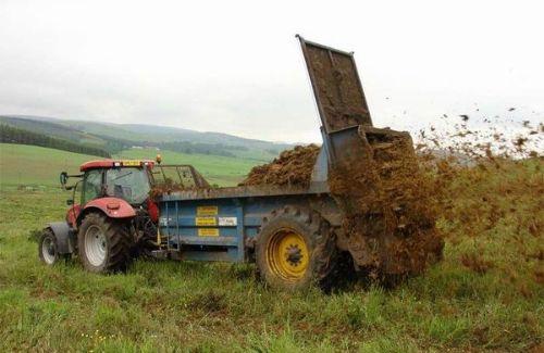 Трактор рассыпает куринный помет на поле