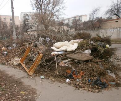 Смітник по вулиці Коцюбинського