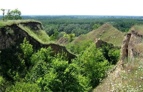 Національному природному парку «Пирятинський» – бути!