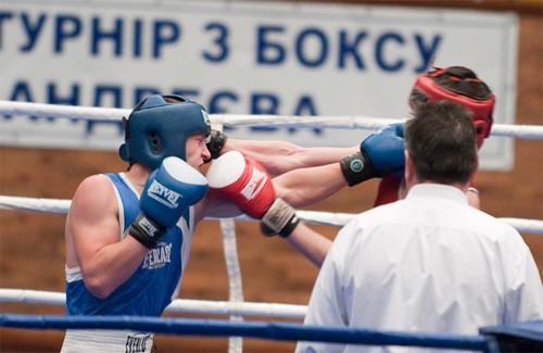 Турнір з боксу пам'яті Бориса Андрєєва