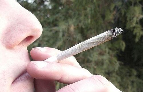 На Полтавщине марихуану курят уже публично