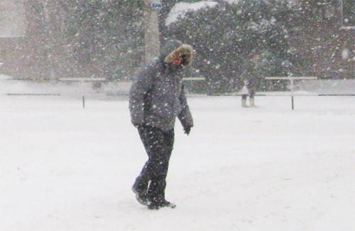 Снігопад у Полтаві 19 грудня