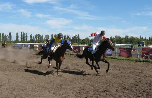 На Полтавщині вперше відбулися кінні скачки