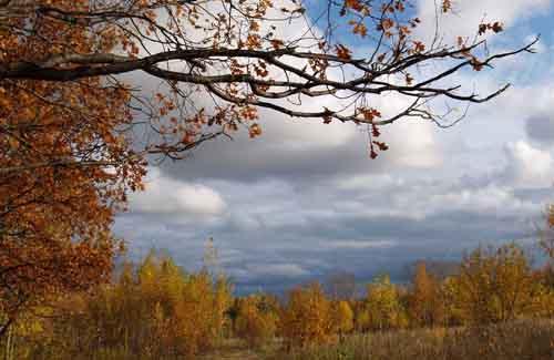 Осень – пора депрессий