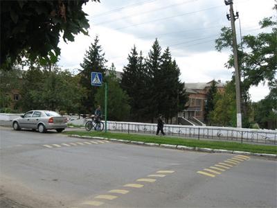 Завдяки «лежачим поліцейським» діти більше не бояться переходити дорогу