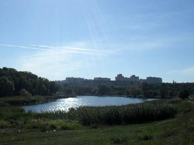 Полтавским прудам угрожает экологическая катастрофа