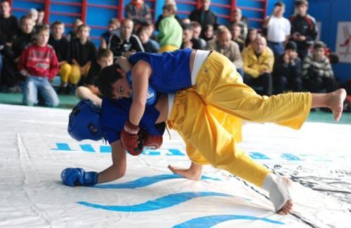 Збірна області з фрі-файту їде на чемпіонат України