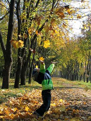 Осеннее счастье
