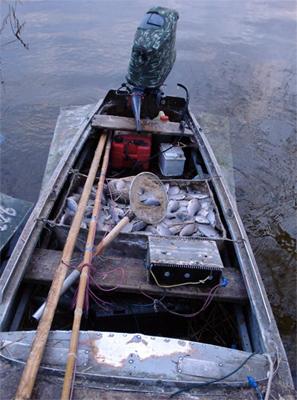 За 150 кг рыбы — 3 года тюрьмы