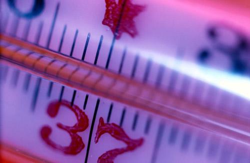 Вирус гриппа: насколько опасен и всесилен
