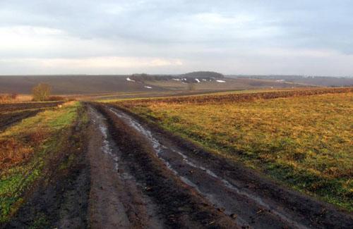 На Полтавщині орендна плата за землю — одна з найвищих