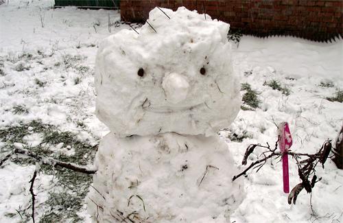 Снеговик в одном из полтавских дворов