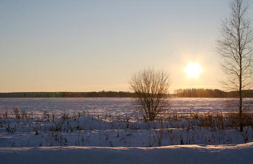 На Полтавщині розкрили аферу із землею Дмитрівської сільської ради