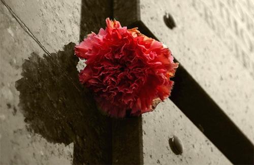 У Полтаві з'являться три меморіальні дошки