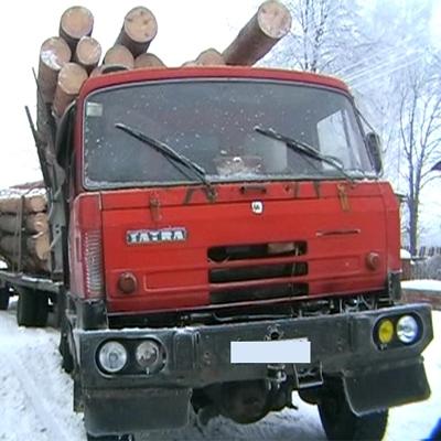 Мешканець Харківщини без документів перевозив 27 кубів деревини