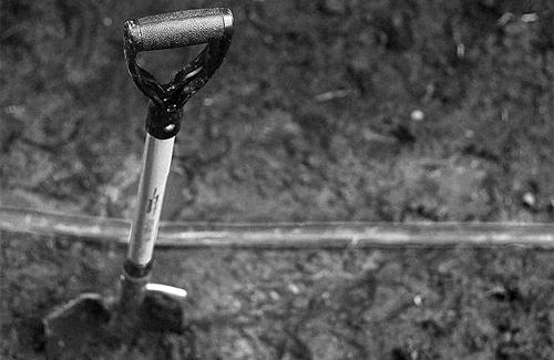 АМКУ: «Тарифи на поховання — рівні для усіх»