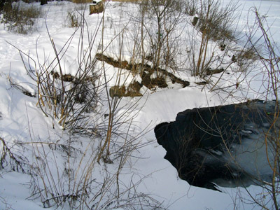 Каналізація виходить у Ворсклу поряд із проспектом Миру. Сморід доводить - підземна ріка змішана з нечистотами...