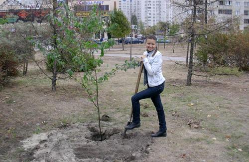 У Всесвітній день лісу посади дерево