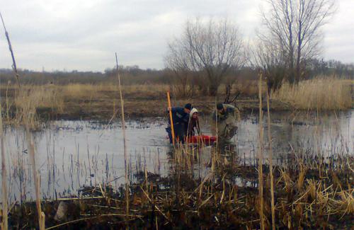 Полтавські МНСники врятували жінку з болота