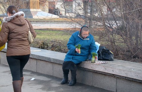 Незаконная торговля первоцветами на пл. Ленина в Полтаве