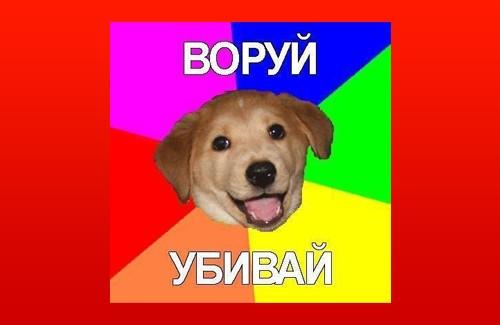 «Advice Dog» – відомий інтернет-мем, що набув особливої популяності в період кризи