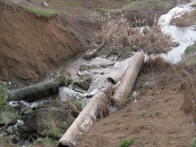 Ерозія ґрунту руйнує дамбу