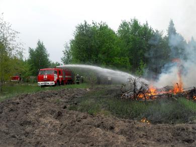 На Полтавщині лісівники влаштували пожежу
