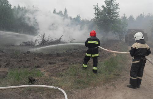 На Полтавщині лісівники влаштували пожежу, а потім вчилися її гасити