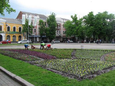 Перед театром им. Гоголя высаживают цветы